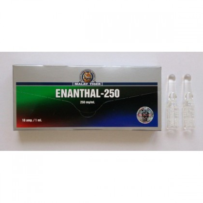 Enantato MT 250mg/amp