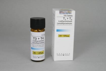 T3 e T4 Genesis (100 com)